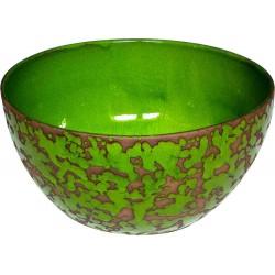 saladier couleur vert