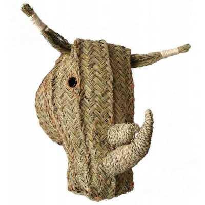 tête de rhinoceros